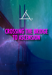 crossing-the-bridgedvd.jpg